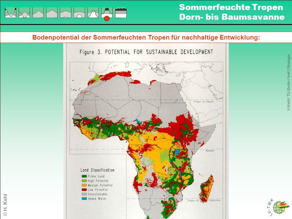 Bodenpotential der Sommerfeuchten Tropen für nachhaltige Entwicklung: