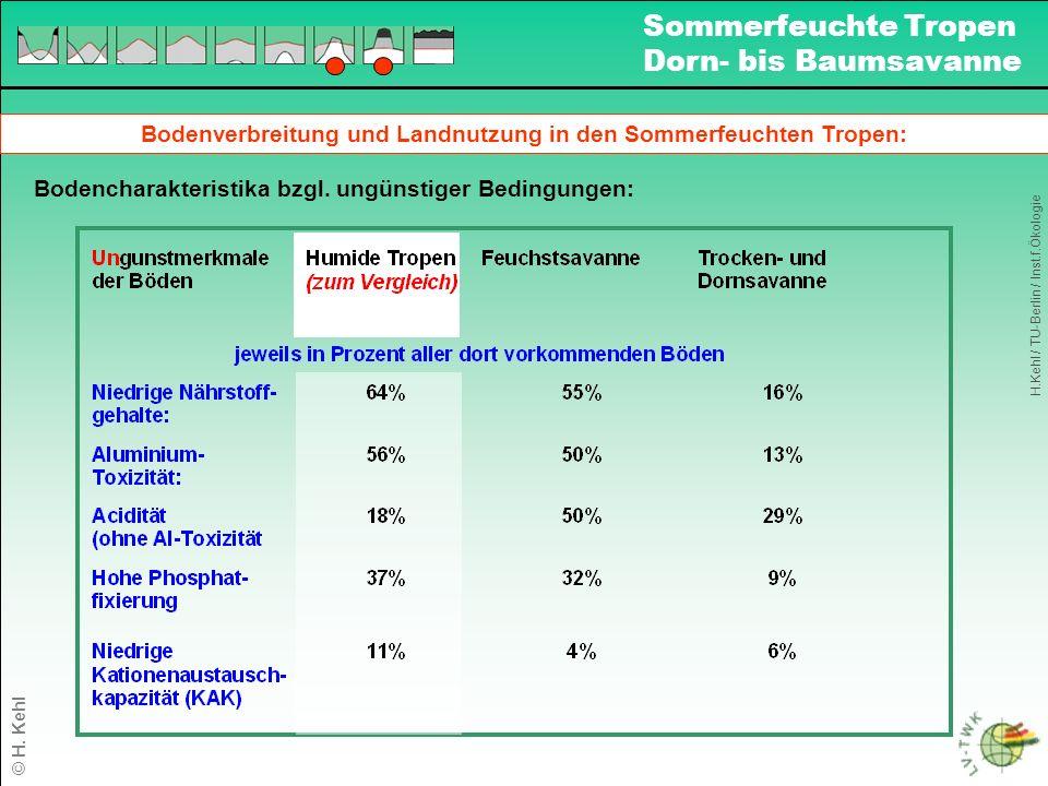 Bodenverbreitung und Landnutzung in den Sommerfeuchten Tropen: