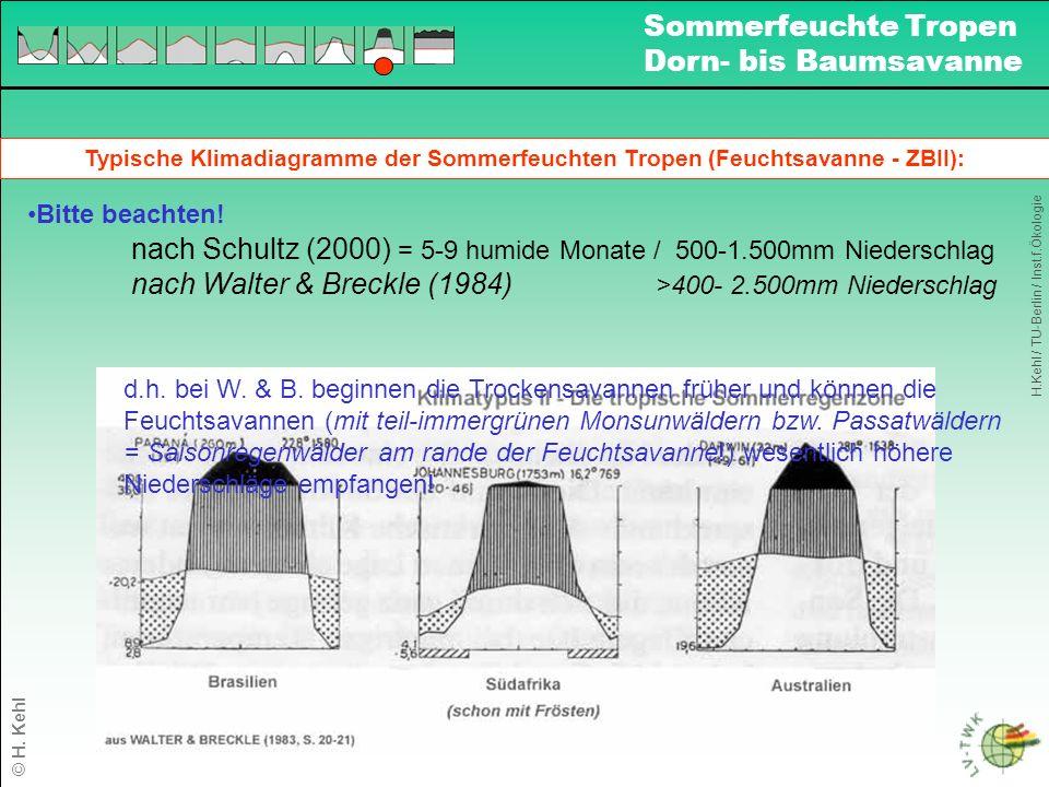 nach Schultz (2000) = 5-9 humide Monate / 500-1.500mm Niederschlag