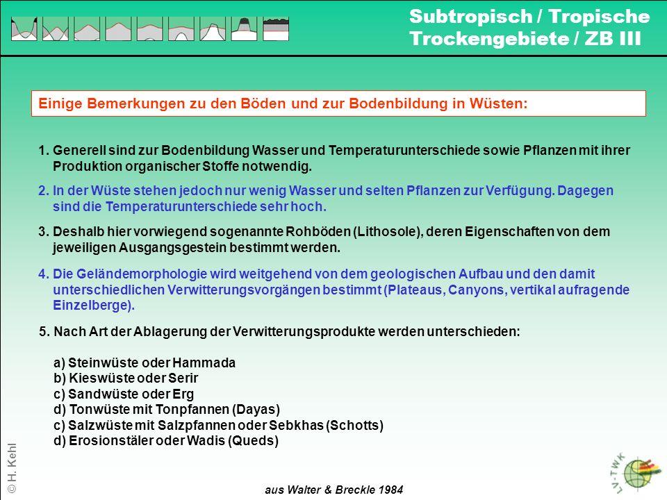 Subtropisch / Tropische Trockengebiete / ZB III