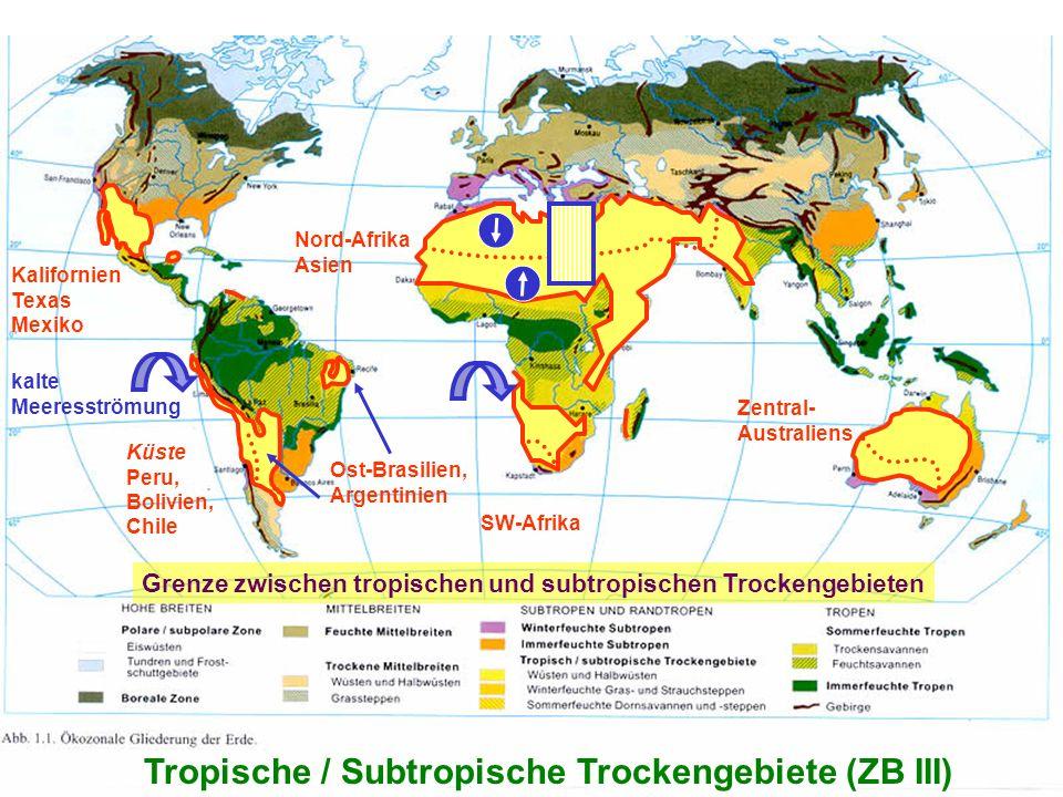 Grenze zwischen tropischen und subtropischen Trockengebieten