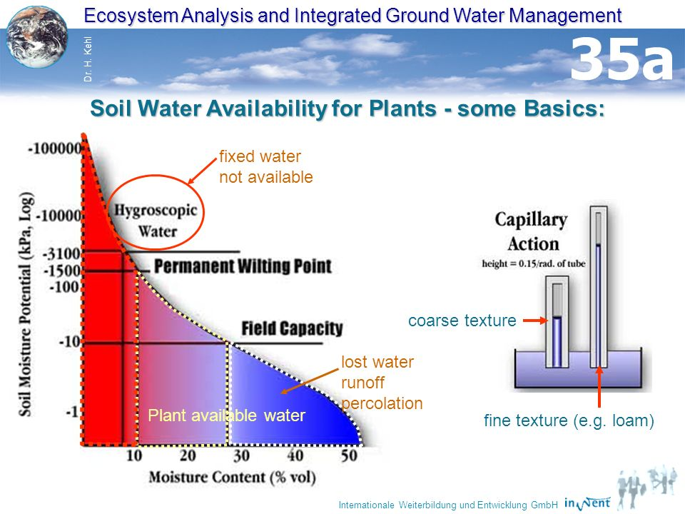 Soil Water Availability for Plants - some Basics: