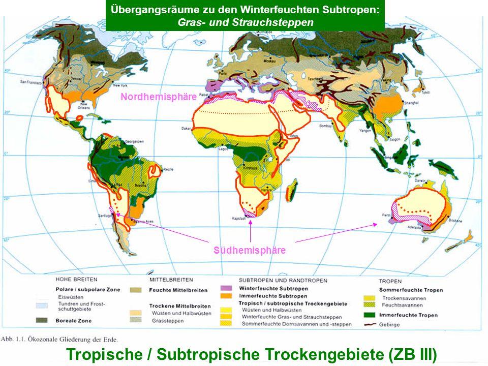 Tropische / Subtropische Trockengebiete (ZB III)