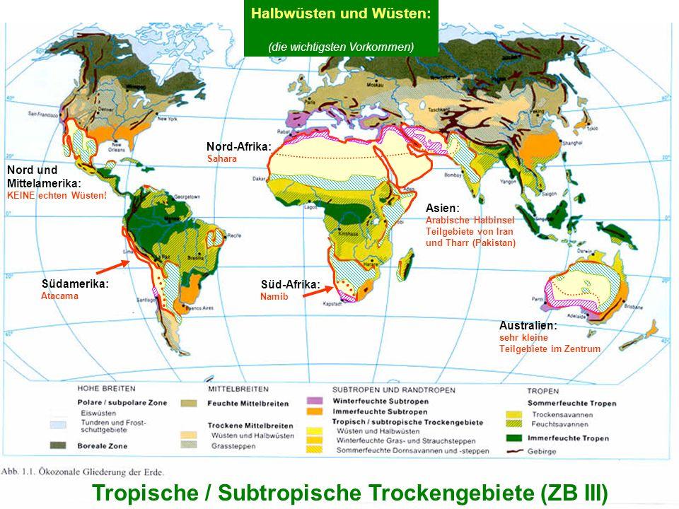 Halbwüsten und Wüsten: