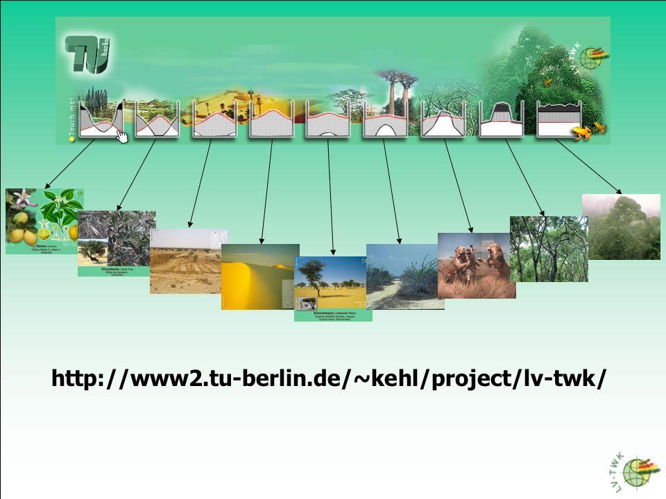 http://www2.tu-berlin.de/~kehl/project/lv-twk/