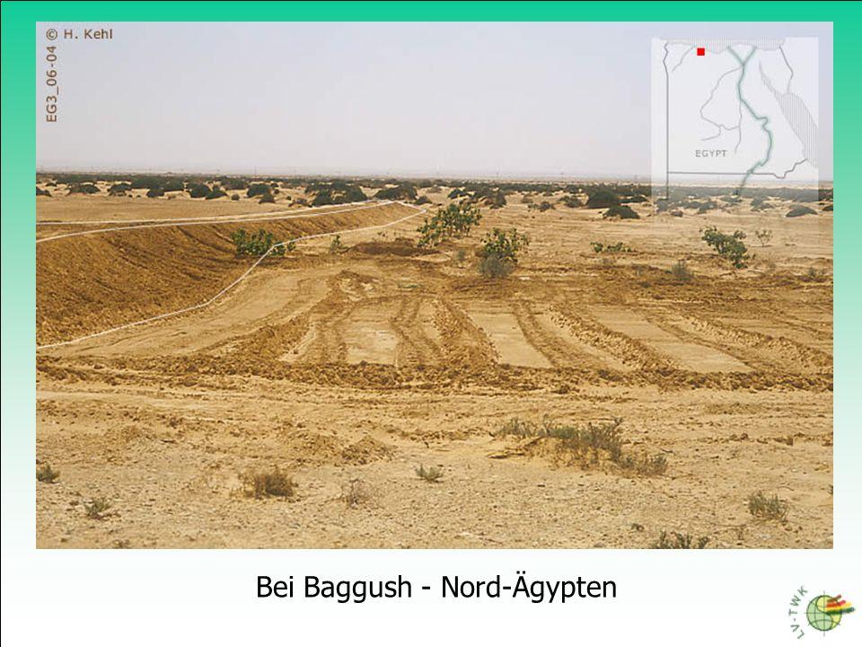 Bei Baggush - Nord-Ägypten