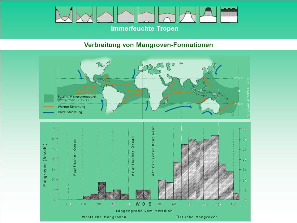 Verbreitung von Mangroven-Formationen