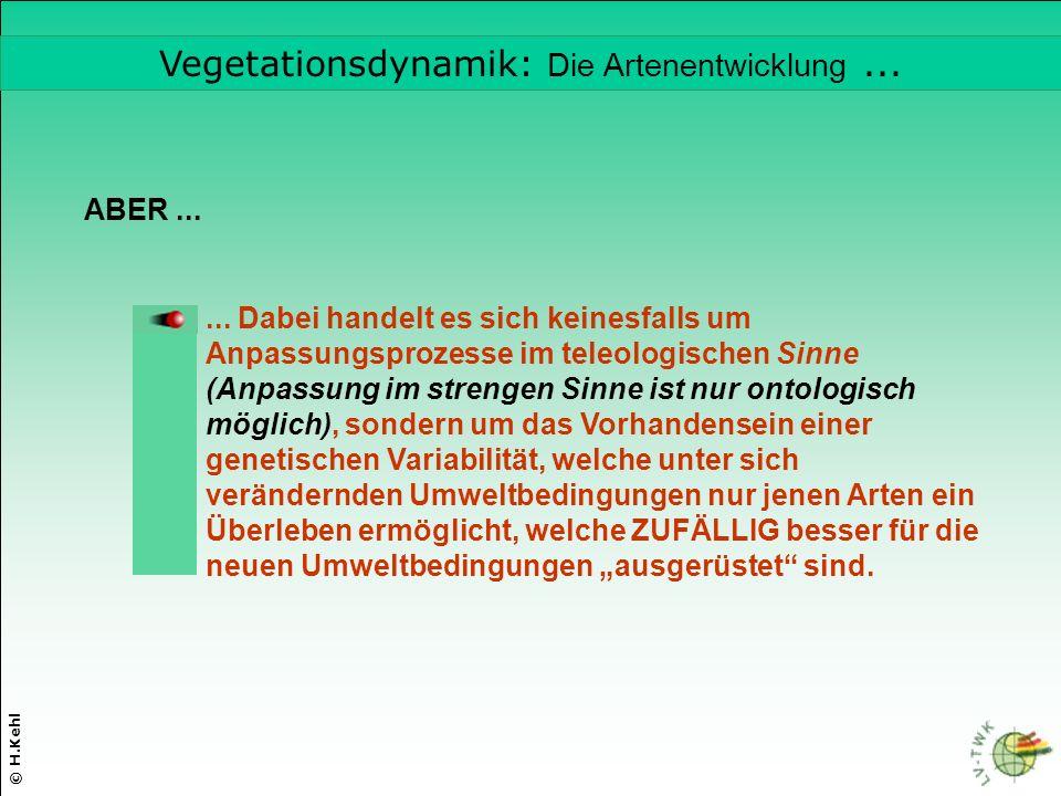 Vegetationsdynamik: Die Artenentwicklung ...