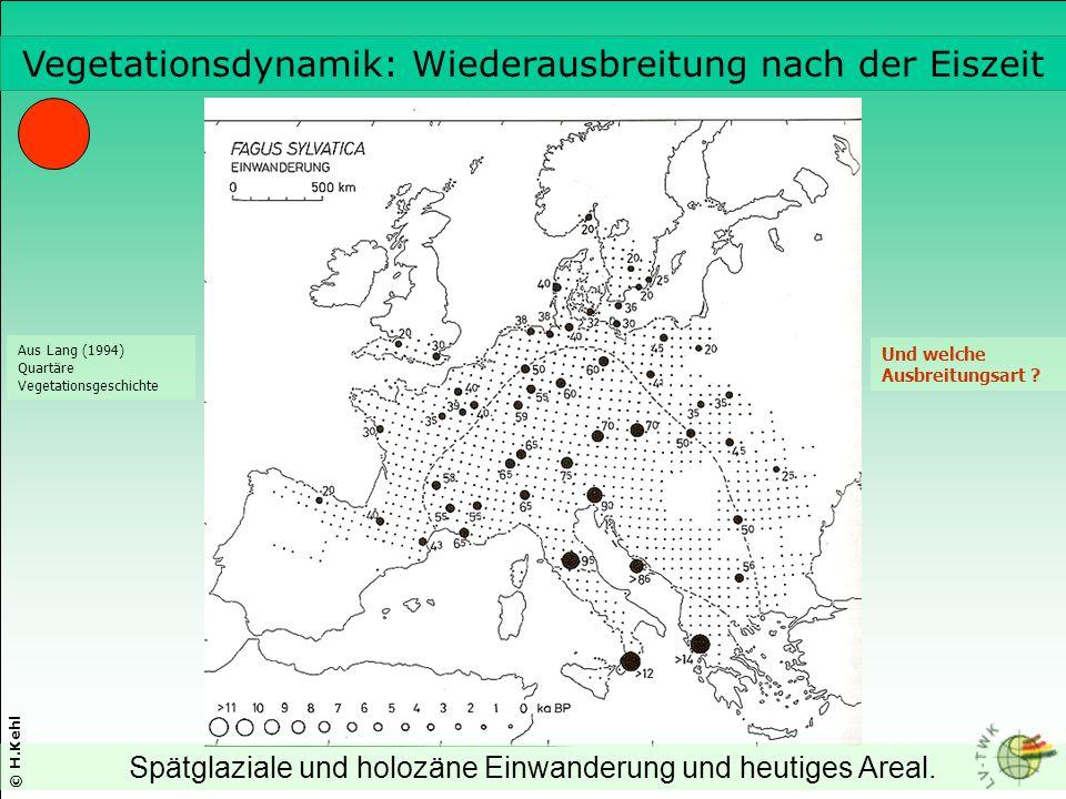 Vegetationsdynamik: Wiederausbreitung nach der Eiszeit