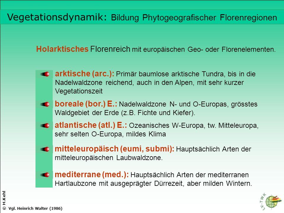 Vegetationsdynamik: Bildung Phytogeografischer Florenregionen