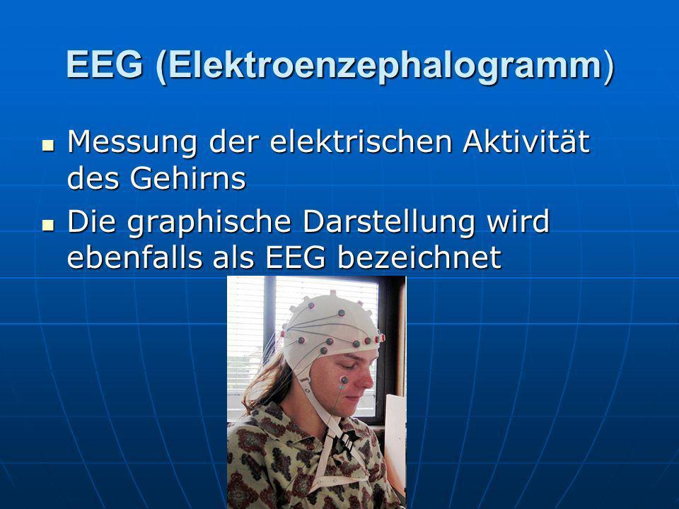 EEG (Elektroenzephalogramm)