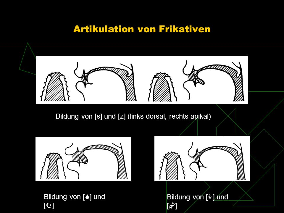 Artikulation von Frikativen