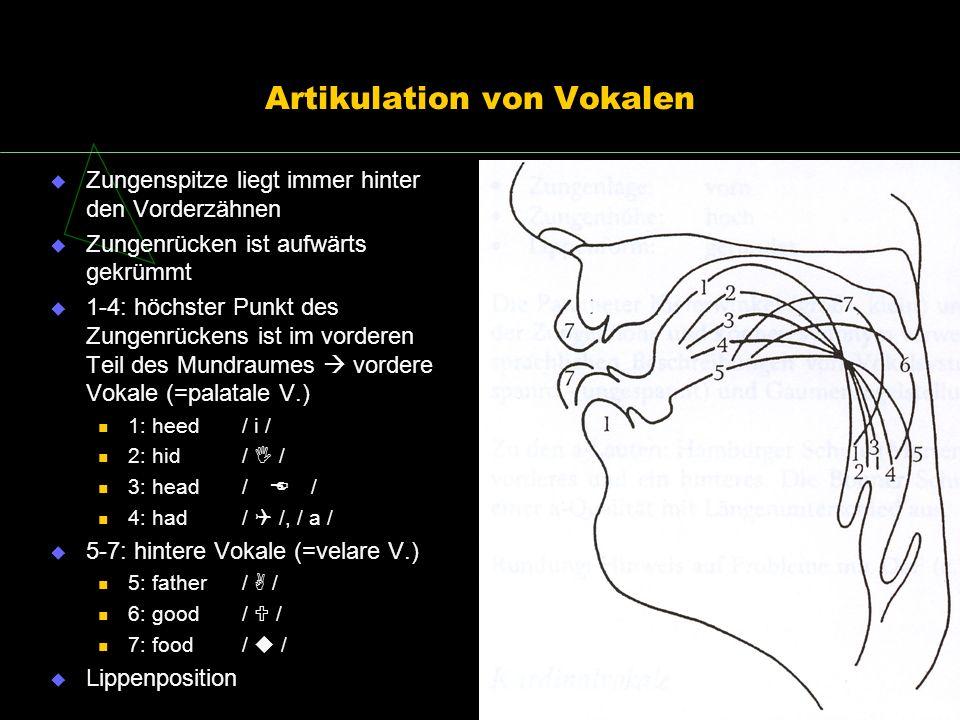 Artikulation von Vokalen