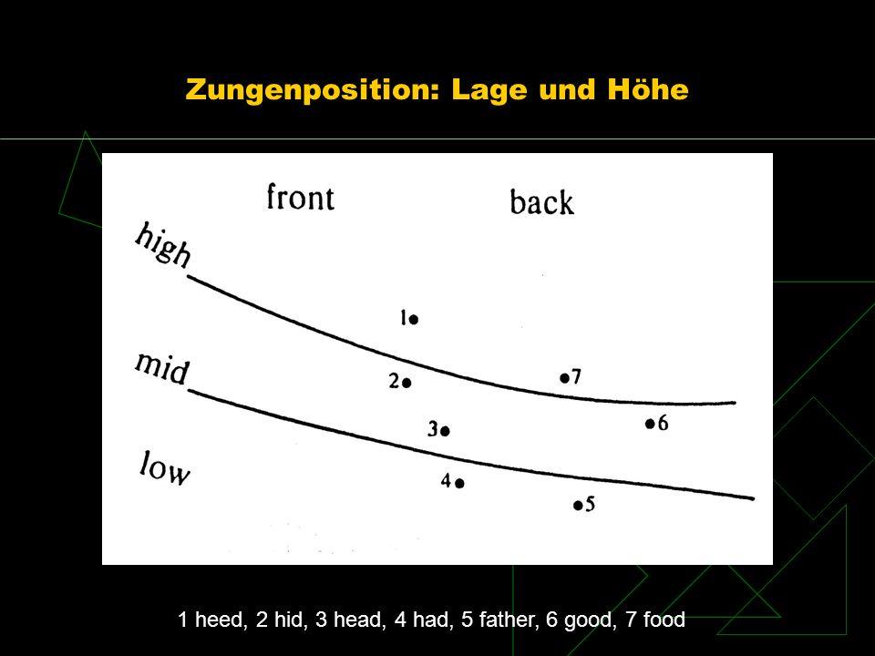 Zungenposition: Lage und Höhe