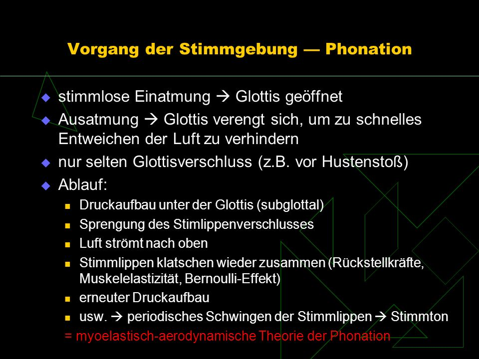 Vorgang der Stimmgebung — Phonation