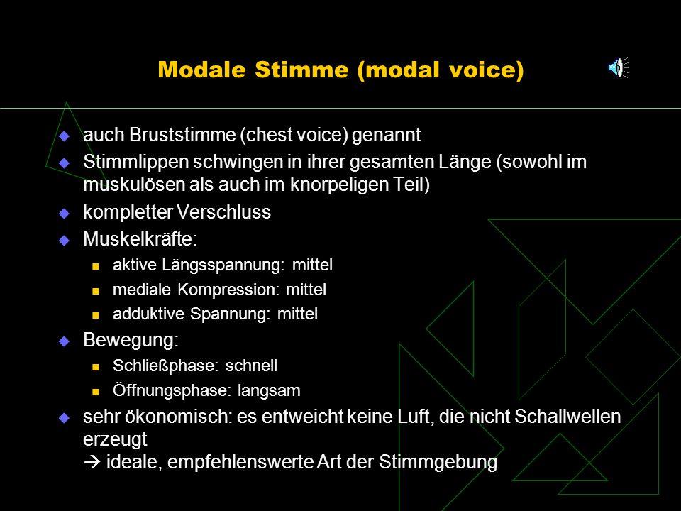 Modale Stimme (modal voice)