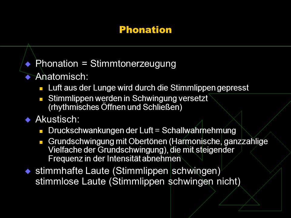 Phonation = Stimmtonerzeugung Anatomisch: