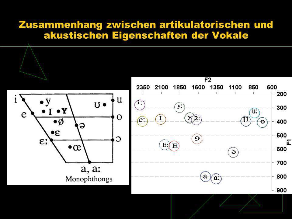 Zusammenhang zwischen artikulatorischen und akustischen Eigenschaften der Vokale