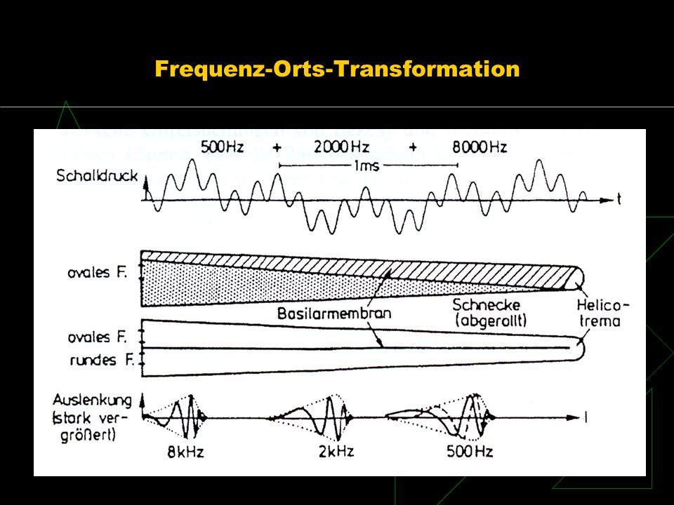 Frequenz-Orts-Transformation