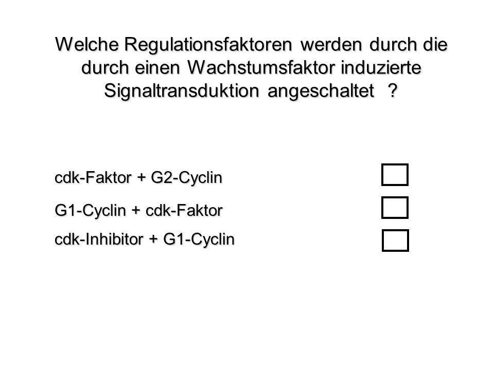 Welche Regulationsfaktoren werden durch die durch einen Wachstumsfaktor induzierte Signaltransduktion angeschaltet