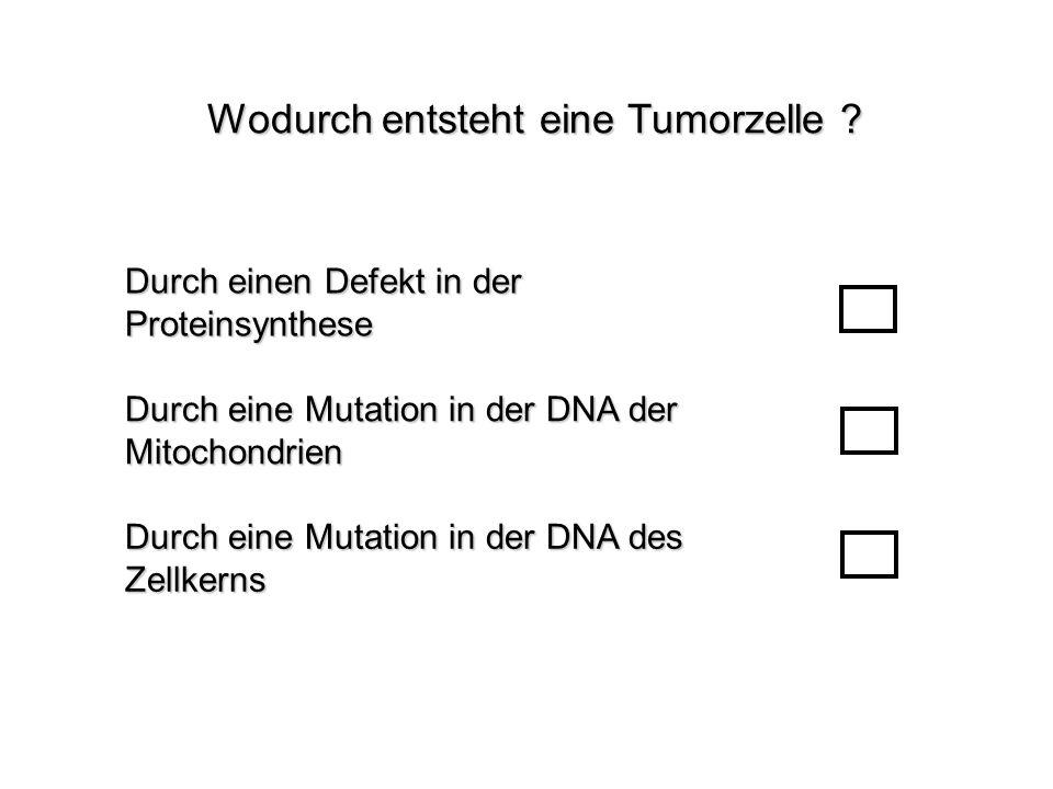 Wodurch entsteht eine Tumorzelle