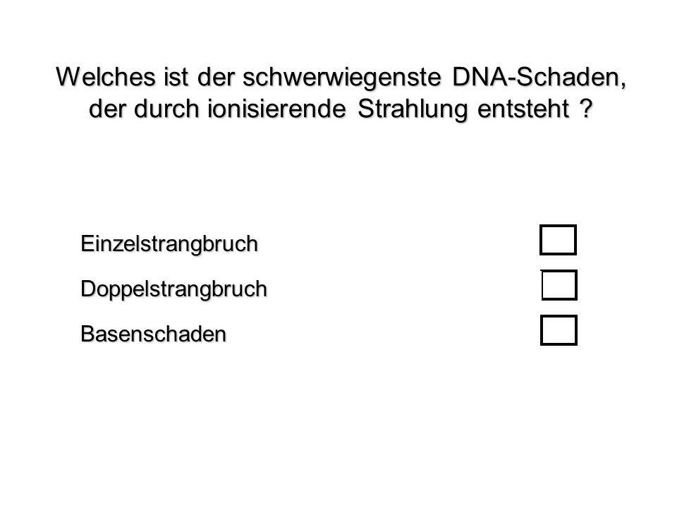 Welches ist der schwerwiegenste DNA-Schaden, der durch ionisierende Strahlung entsteht