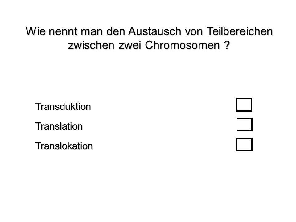 Wie nennt man den Austausch von Teilbereichen zwischen zwei Chromosomen