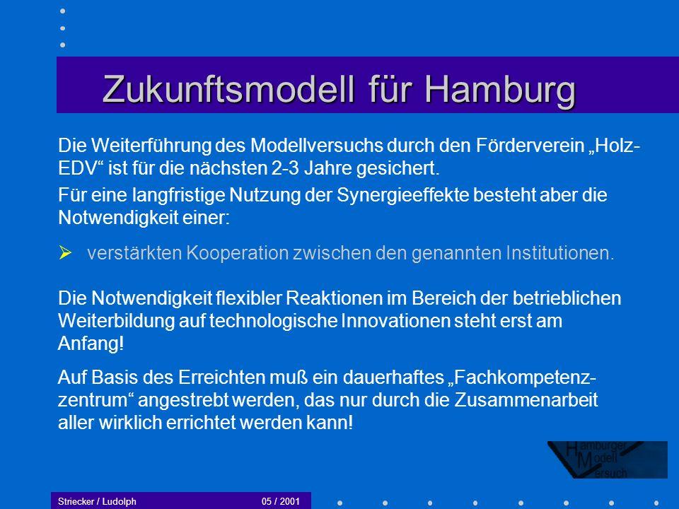 Zukunftsmodell für Hamburg