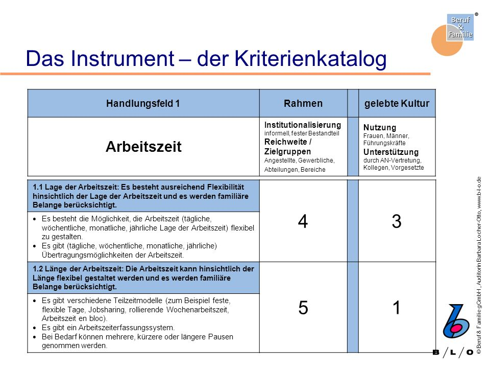 Das Instrument – der Kriterienkatalog