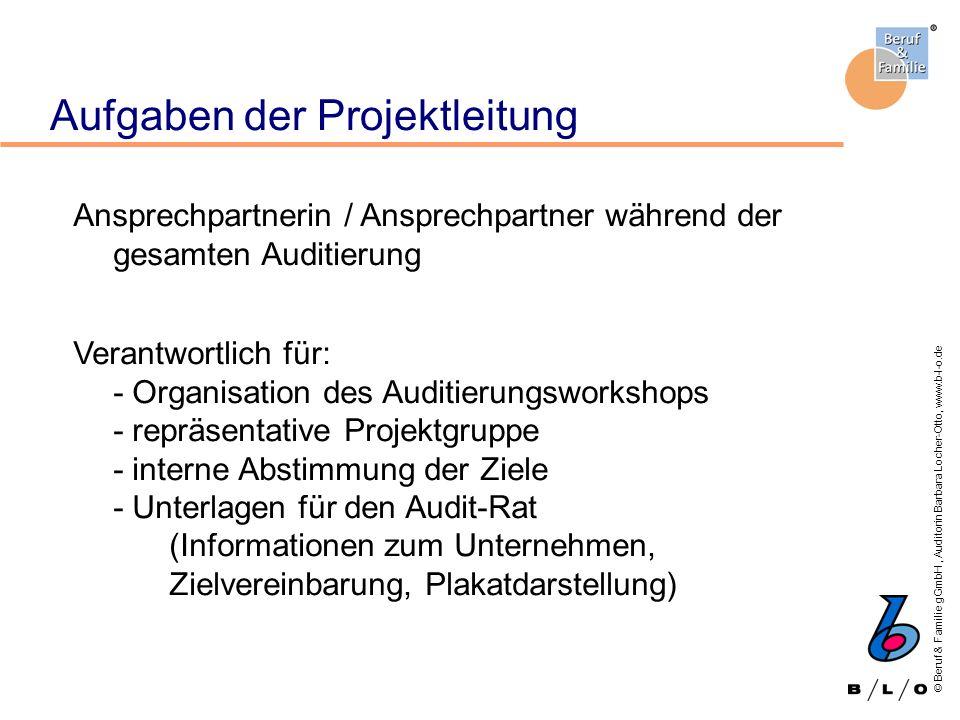 Aufgaben der Projektleitung