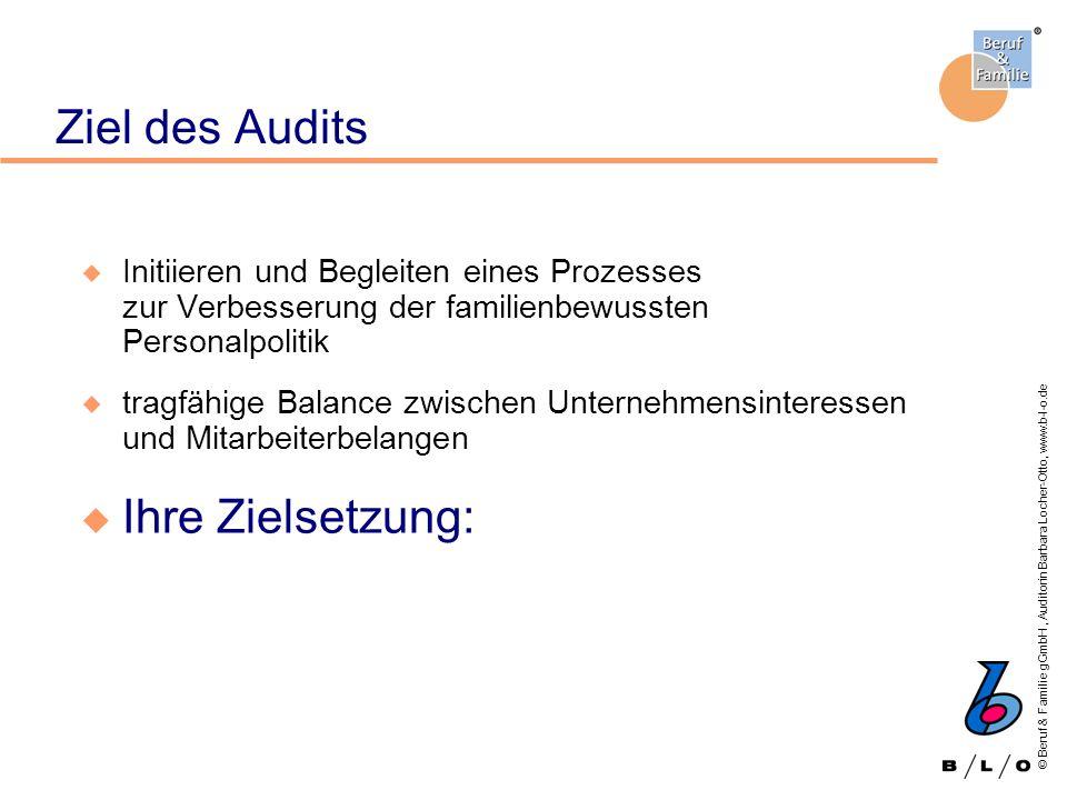 Ziel des Audits Ihre Zielsetzung: