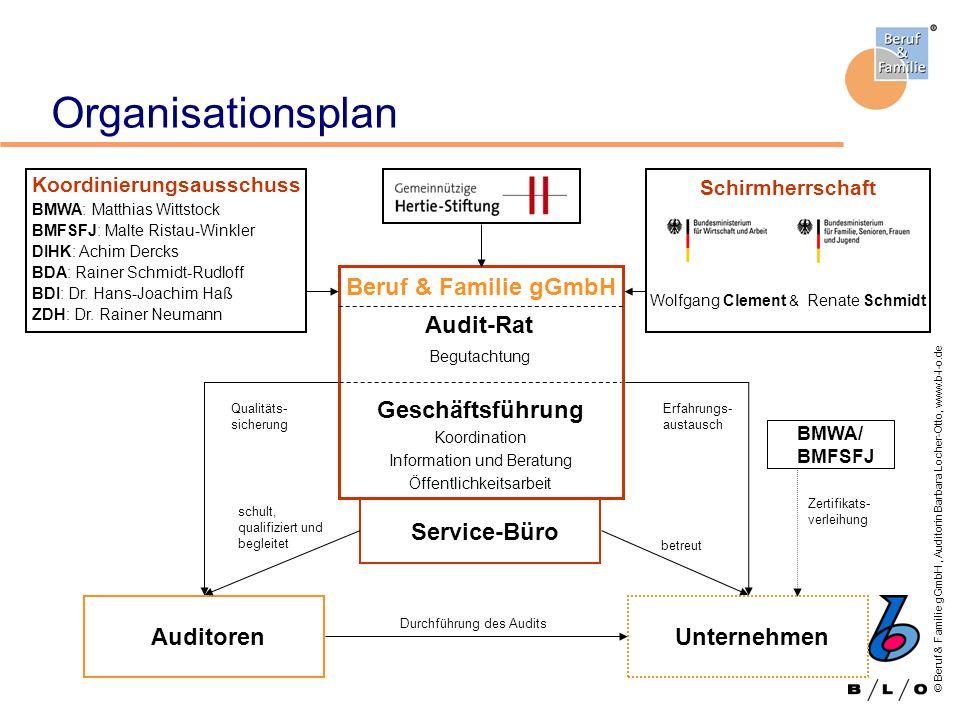 Organisationsplan Beruf & Familie gGmbH Audit-Rat Geschäftsführung