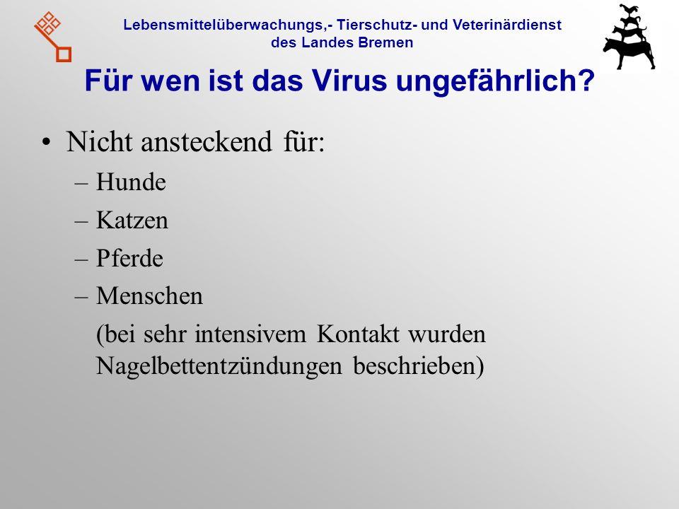 Für wen ist das Virus ungefährlich