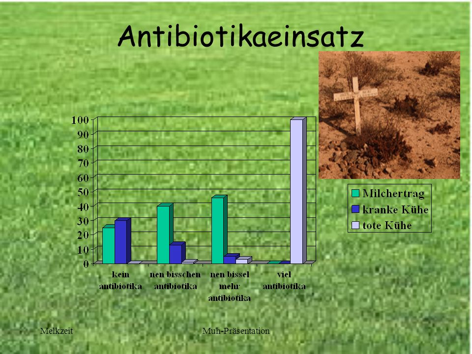 Antibiotikaeinsatz Melkzeit Muh-Präsentation