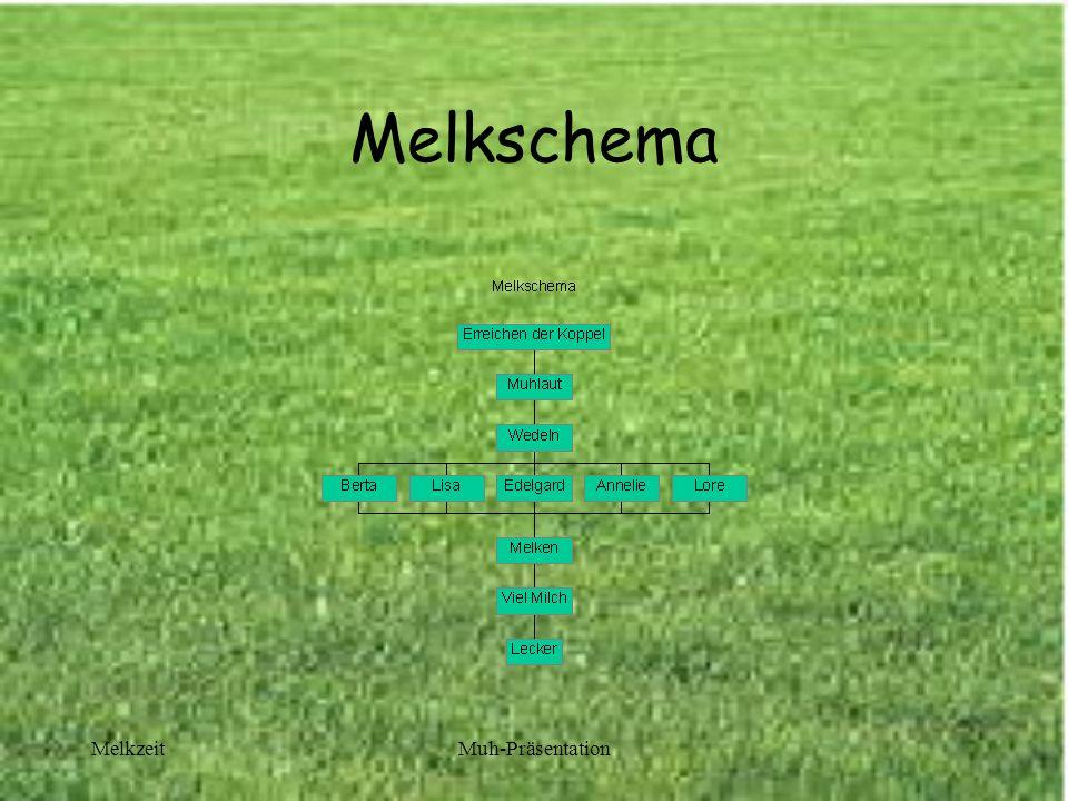 Melkschema Melkzeit Muh-Präsentation