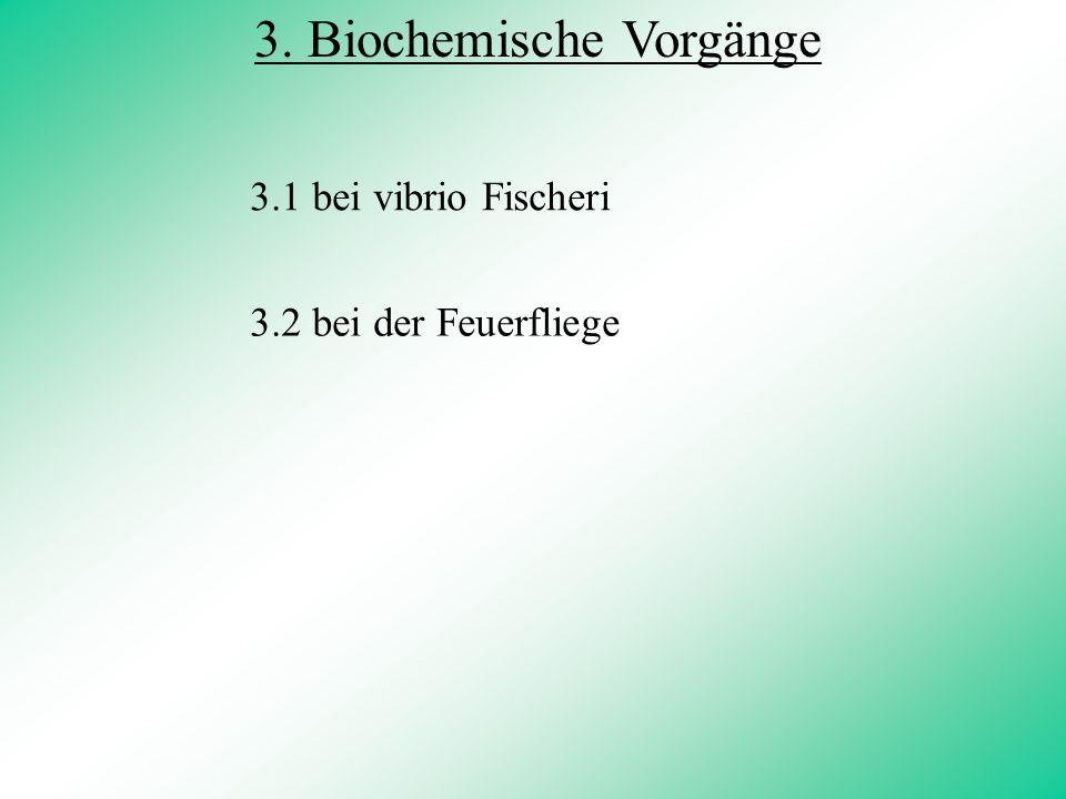 3. Biochemische Vorgänge