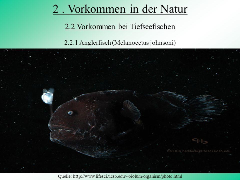 2 . Vorkommen in der Natur 2.2 Vorkommen bei Tiefseefischen