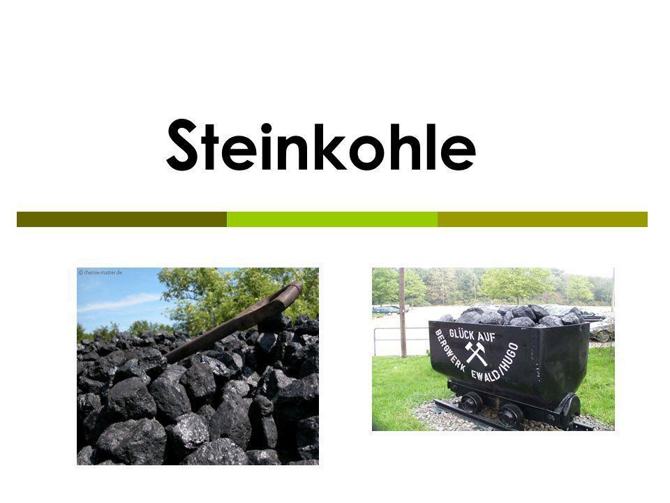 Steinkohle