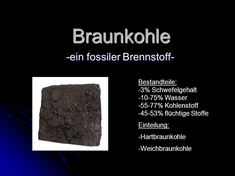 -ein fossiler Brennstoff-
