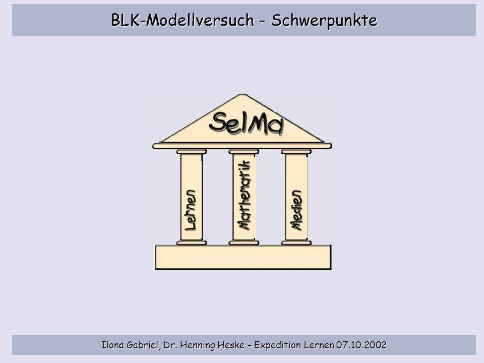 BLK-Modellversuch - Schwerpunkte