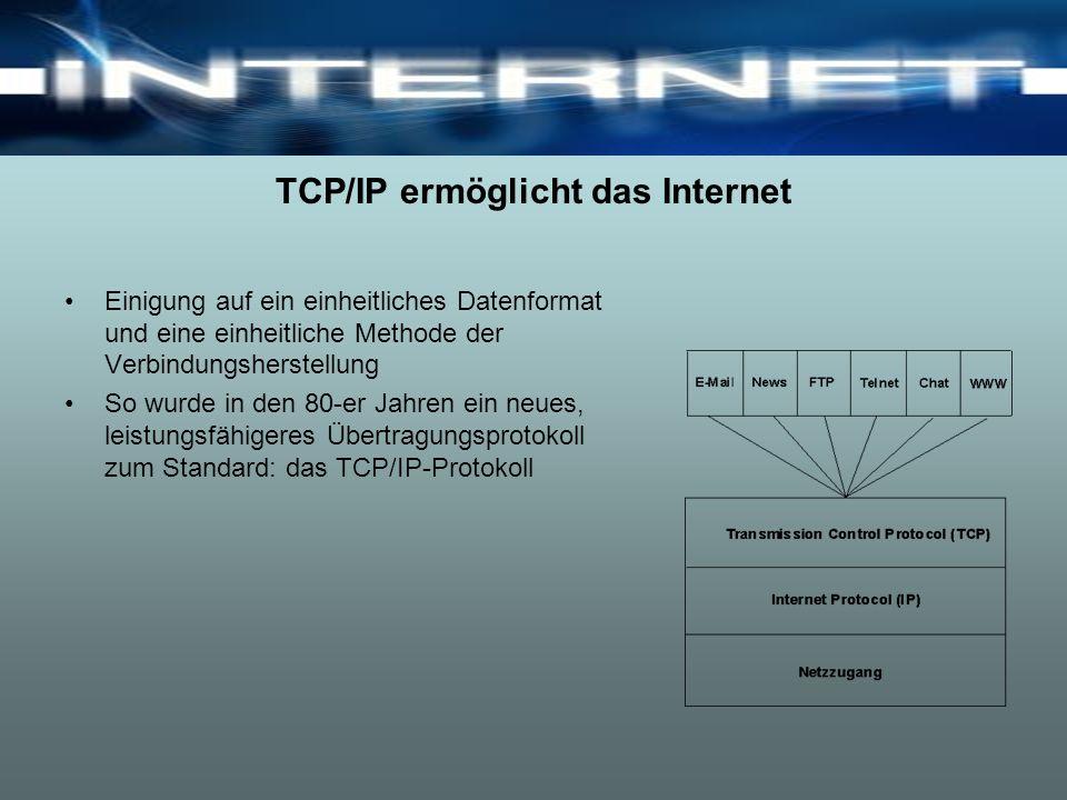 TCP/IP ermöglicht das Internet