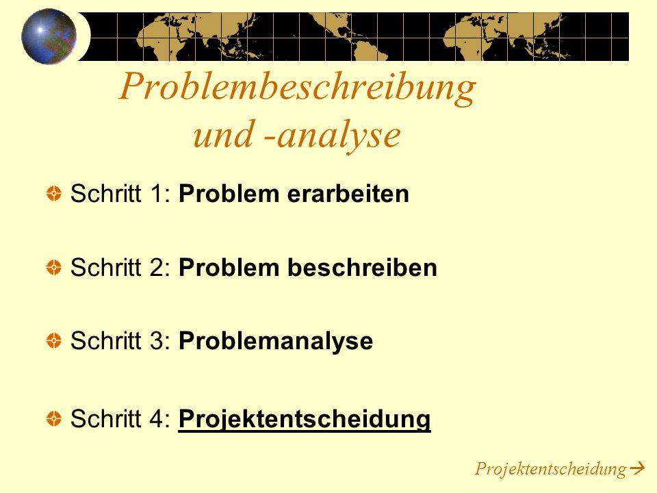 Problembeschreibung und -analyse