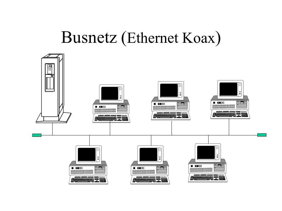 Busnetz (Ethernet Koax)