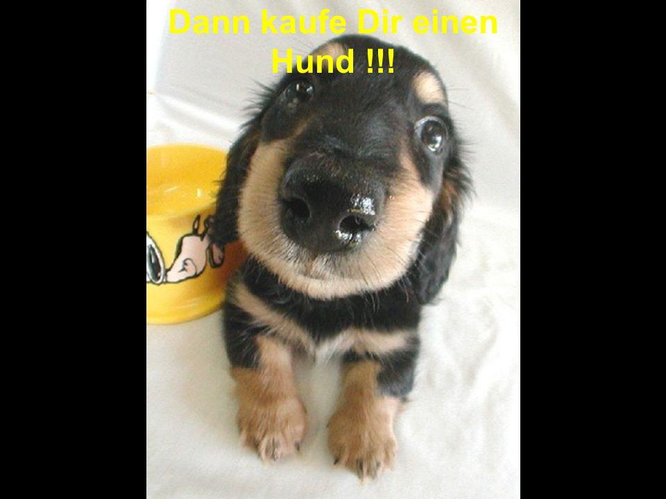 Dann kaufe Dir einen Hund !!!