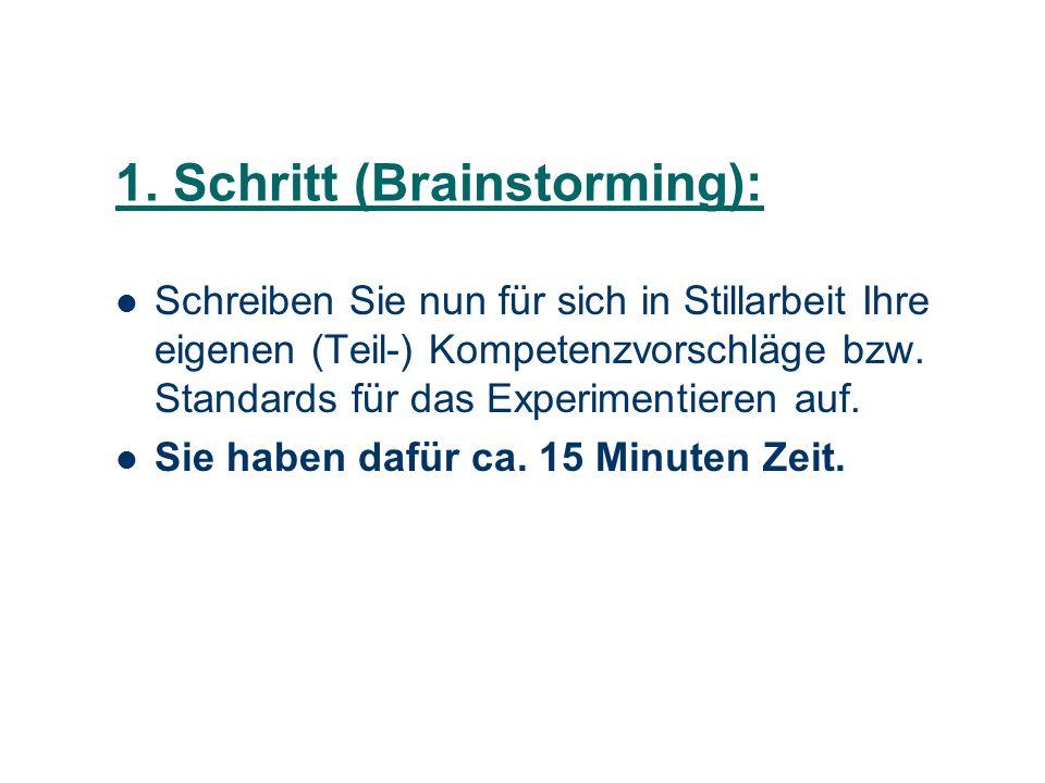 1. Schritt (Brainstorming):