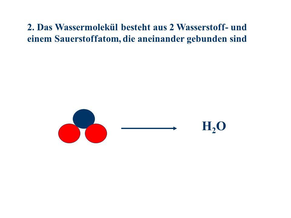 2. Das Wassermolekül besteht aus 2 Wasserstoff- und einem Sauerstoffatom, die aneinander gebunden sind