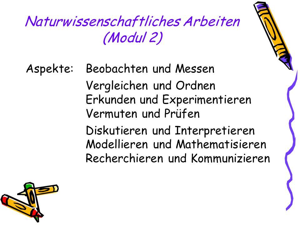 Naturwissenschaftliches Arbeiten (Modul 2)