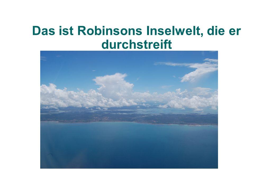 Das ist Robinsons Inselwelt, die er durchstreift