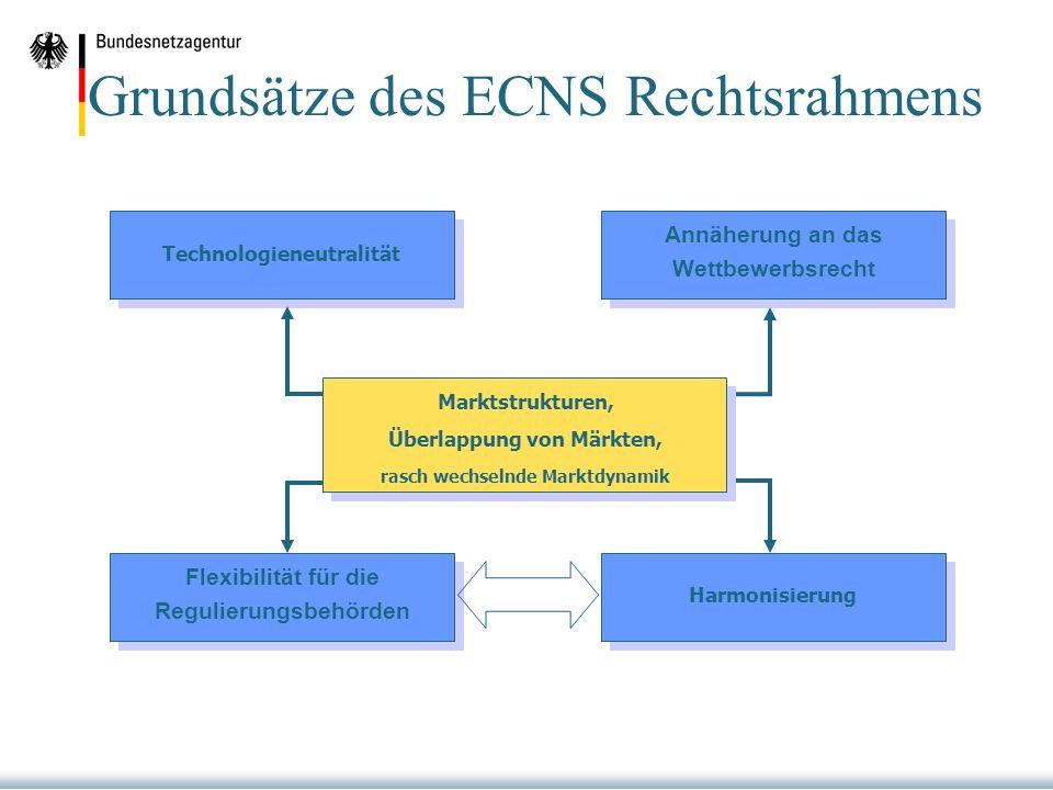 Grundsätze des ECNS Rechtsrahmens