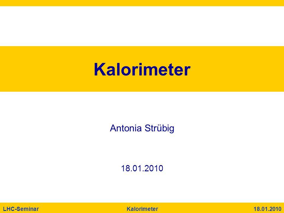 Kalorimeter Antonia Strübig 18.01.2010